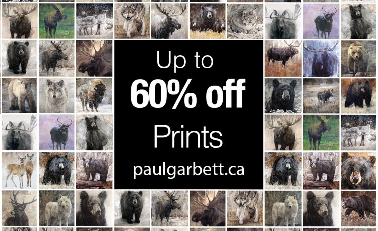 New Prices on Limited Edition Prints