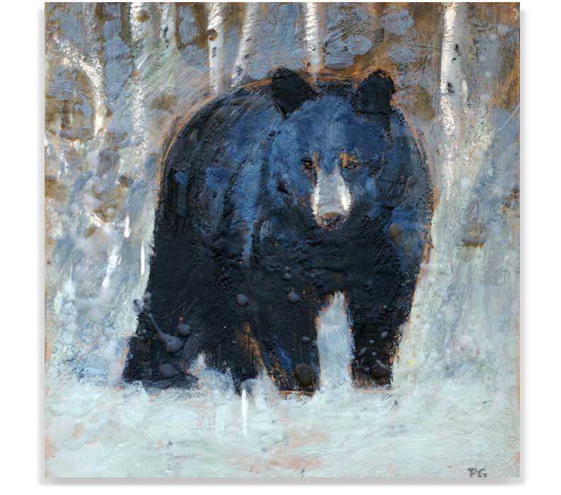 BLACK BEAR 54-02, ENCAUSTIC ON PANEL, 12