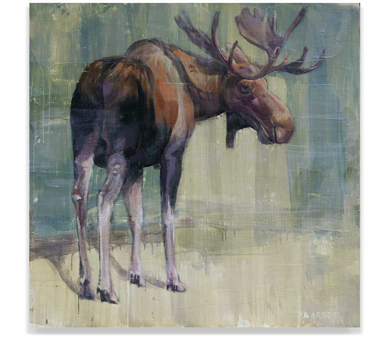 MOOSE 57-13, ENCAUSTIC ON PANEL, 48