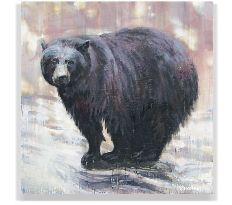 BLACK BEAR ON ROCK 57-016, ENCAUSTIC ON PANEL, 48