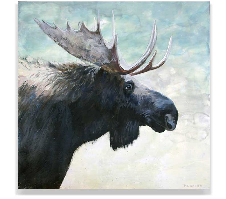 MOOSE HEAD 57_018, ENCAUSTIC ON PANEL, 60