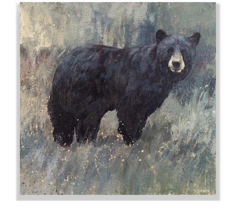 "BLACK BEAR 59-25, ENCAUSTIC ON CANVAS ON PANEL, 60"" X 60"""