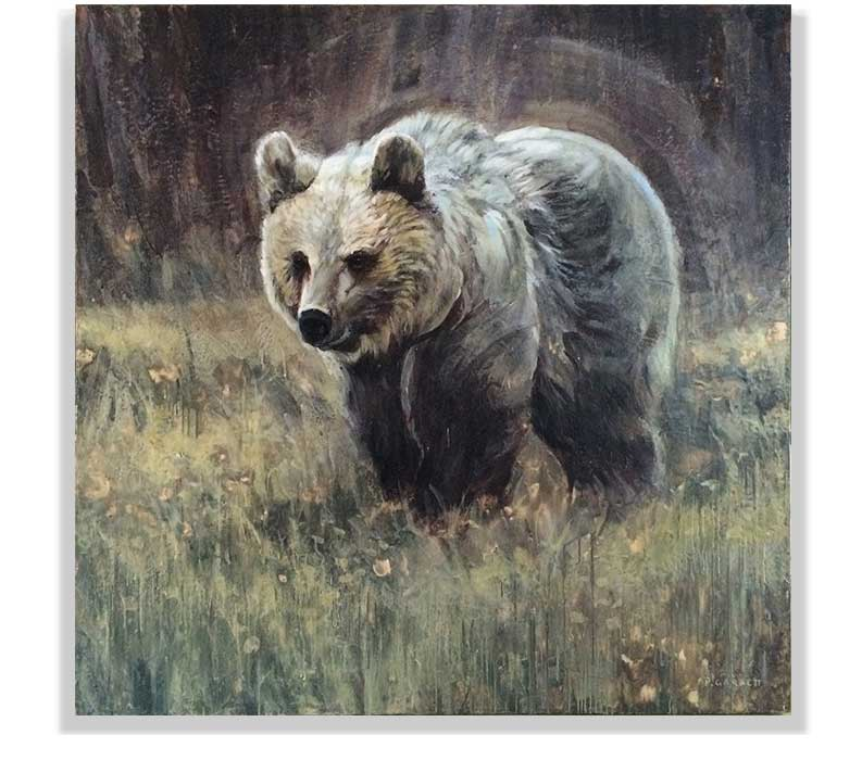 "GRIZZLY BEAR 59-24, ENCAUSTIC ON CANVAS ON PANEL, 60"" X 60"