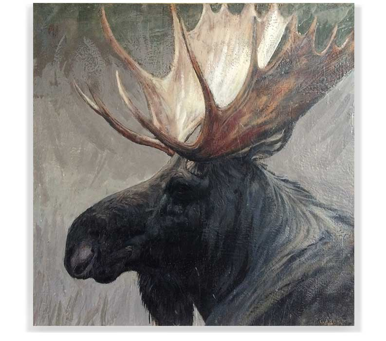"MOOSE HEAD 59-10, ENCAUSTIC ON CANVAS ON PANEL, 48"" X 48"